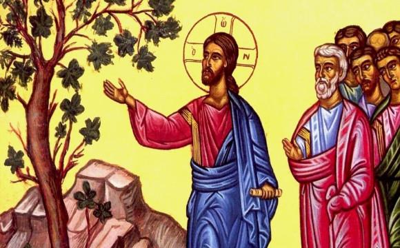 jesus with tree