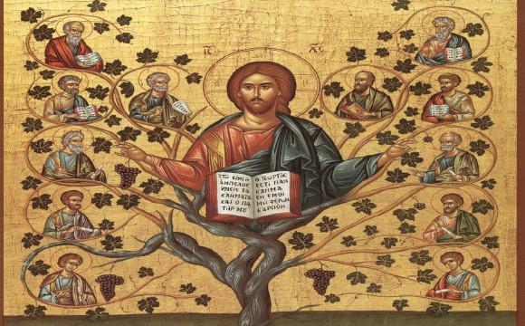 Jesus the True Vine 2